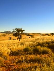 Wandern in Afrika und Südafrika